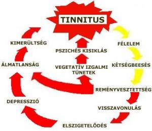 Tinnitus jelentése